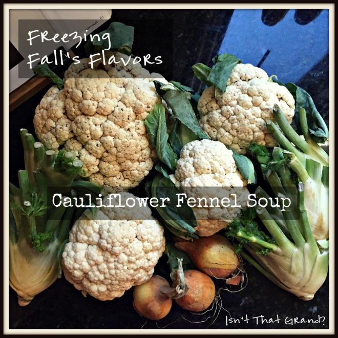 Cauliflower Fennel Soup